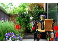 Зеленые балконы - новые возможности озеленения